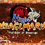 Ninja Usagimaru The Gem of Blessings (USA) 3DS ROM CIA