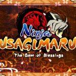 Ninja Usagimaru The Gem of Blessings (USA) 3DS ROM CIA